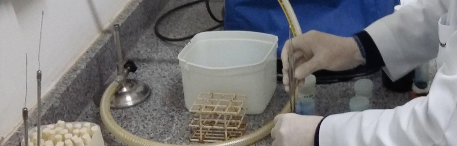 Imagem das mãos de um pesquisador manipulando materiais de laboratório.